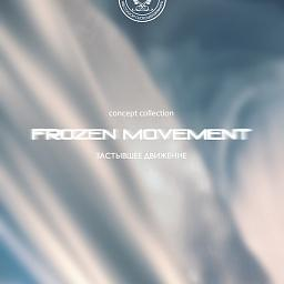 FROZEN MOVEMENT